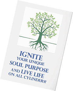 Ignite your unique soul purpose ebook
